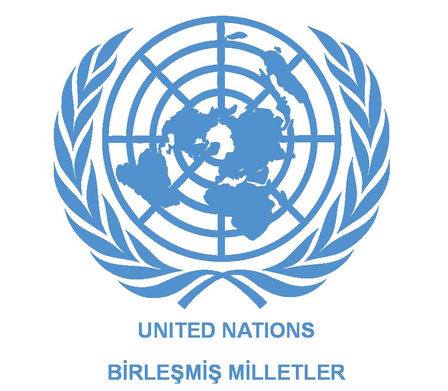 Birleşmiş Milletler'in Türkiye temsilciliğinde mültecilere dayak!