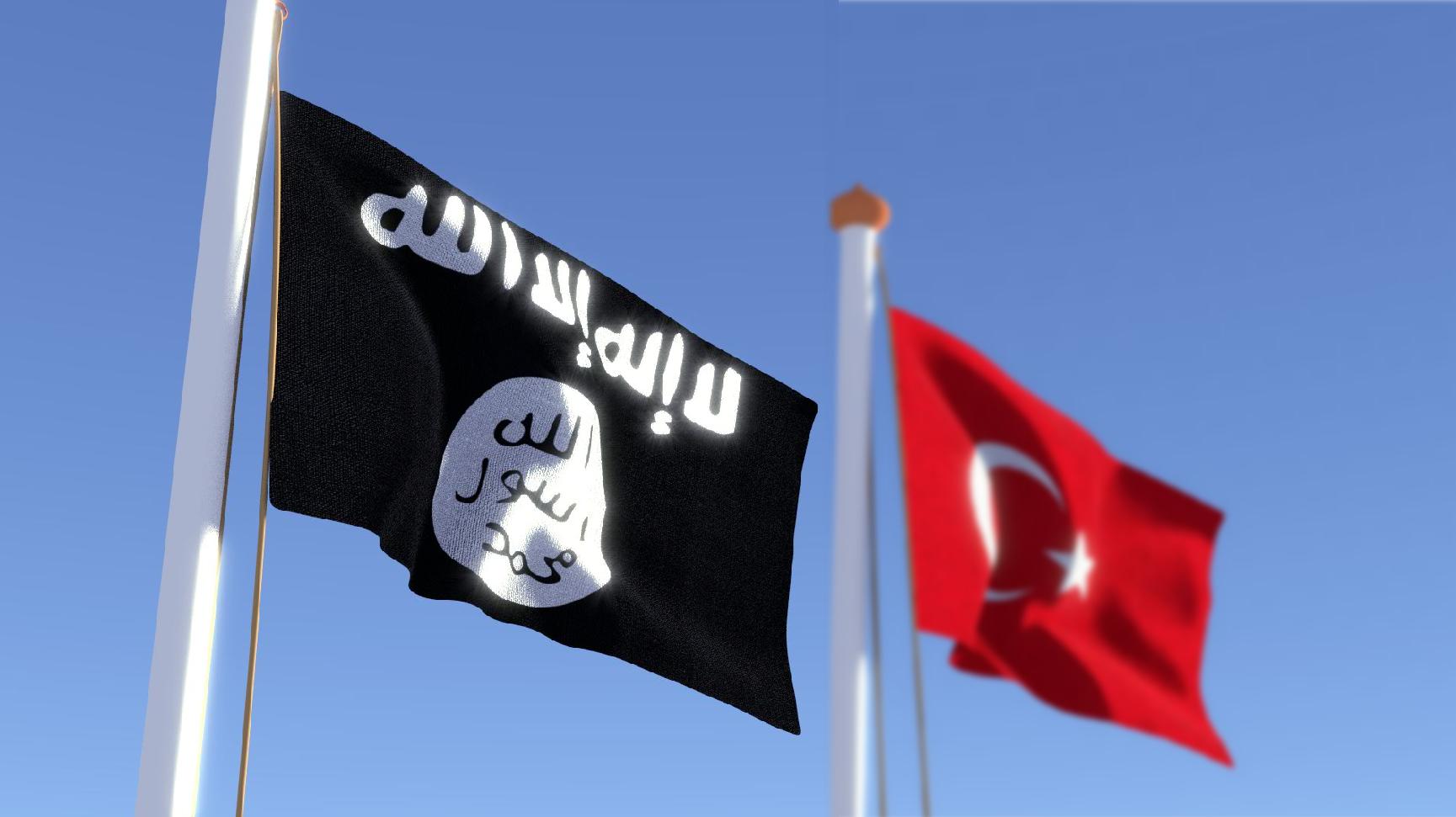 Türkiye IŞİD'e müdahale hazırlığında mı?