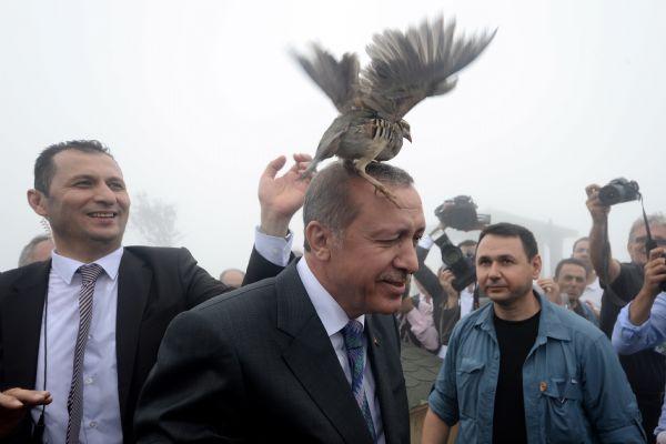 Büyükelçiler Erdoğan'a bu sefer mektup ile sordu