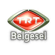 TRT'ye göre cihatçı propagandayı eleştirmek provokasyonmuş!