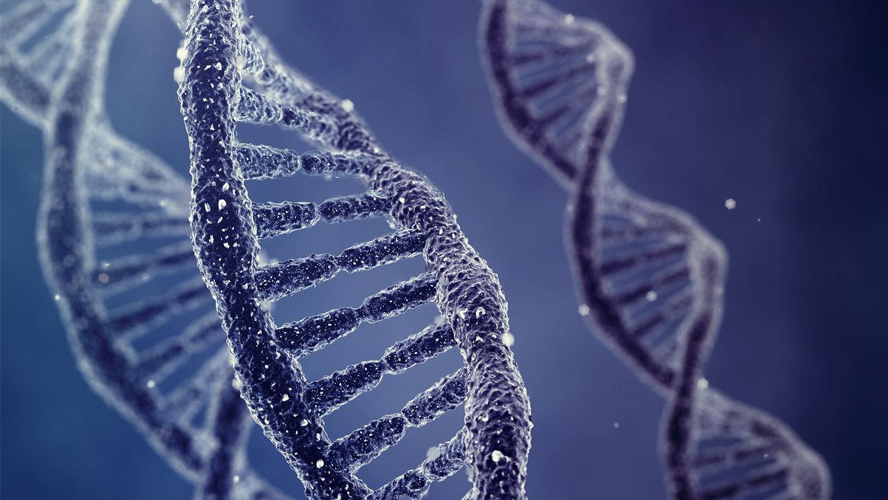 DNA içine veri depolamayı başardılar
