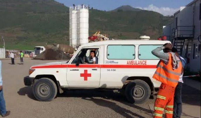 Etiyopya'da tifo salgını: Türk şirketin şantiyesinde yüzlerce gurbetçi işçi hastalandı
