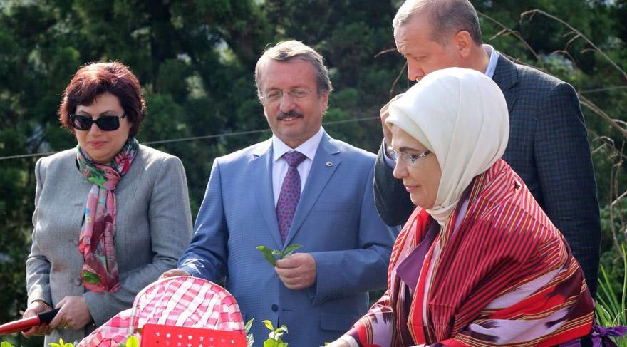 Erdoğan'la 'çay toplayan' Danıştay Başkanı'ndan Diyanet'e: Selaları iyi düşünmüşsünüz