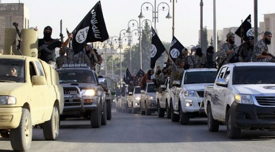 Araştırma şirketi: Türkiye'de her 5 kişiden 1'i IŞİD'i destekliyor