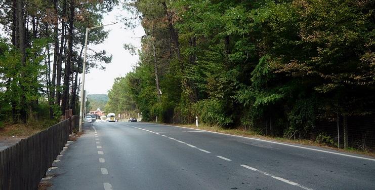 Sarıyer'de 160 dönüm orman 'mezar' olacak