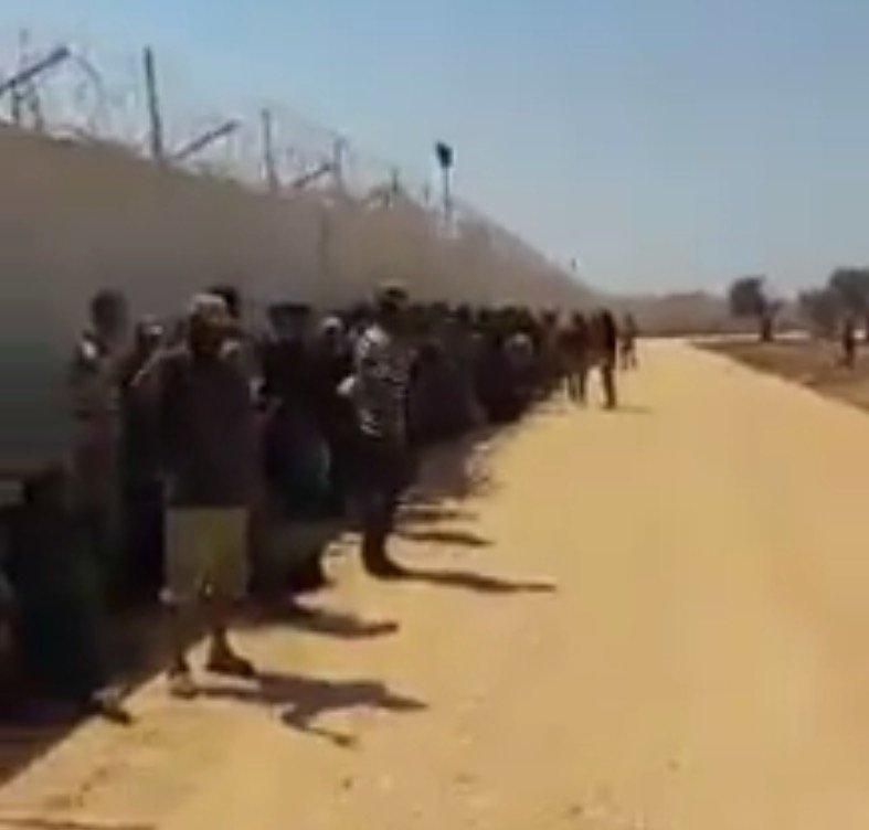Türkiye yüzlerce cihatçıyı Cerablus'a saldırmak için Karkamış'a getirdi