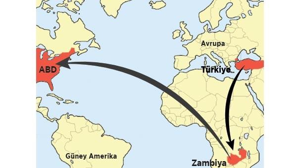 Cemaat üyeleri Zambiya üzerinden ABD'ye kaçıyormuş