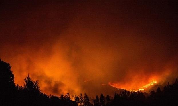 VİDEO | Şili'de büyük felaket: 140 bin hektar orman kül oldu!