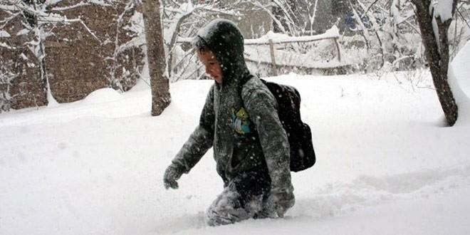 Erzurum'da kar tatili isyanı: Bizim çocuklar kutup ayısı mı?