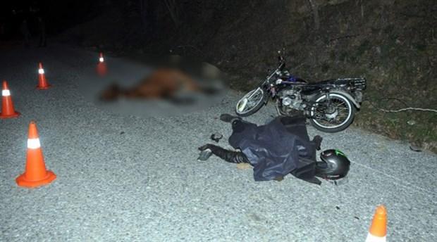 Aydın'da motosiklet yarış atına çarptı: 1 ölü, 2 yaralı