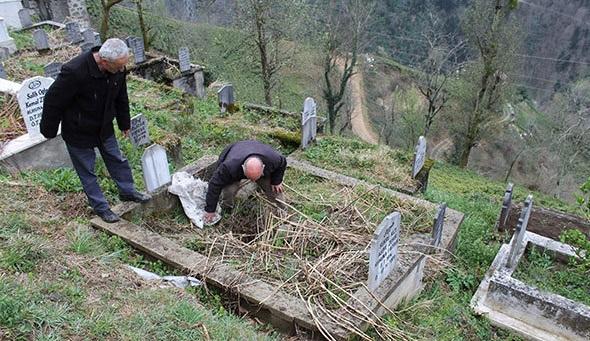 Rize'de aç kalan ayılar mezarları açıyor