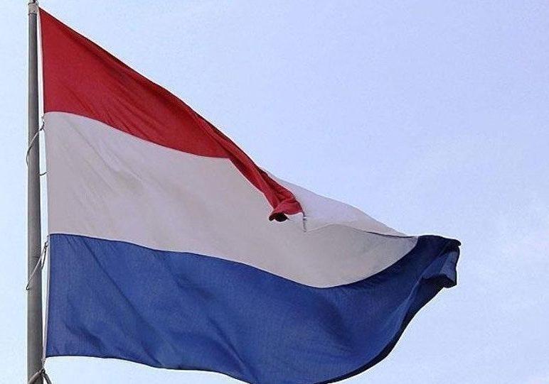 Hollanda FETÖ'den sığınma hakkını tanıdı