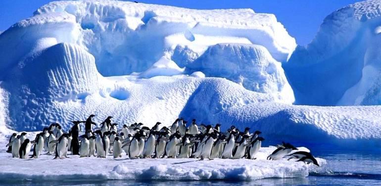 Su sıkıntısı çeken Birleşik Arap Emirlikleri gözünü Antarktika'daki buz dağlarına dikti