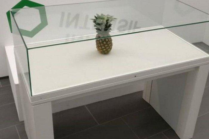 Şaka için sergiye bırakılan ananas, sanat eseri sanılıp cam vitrine konuldu