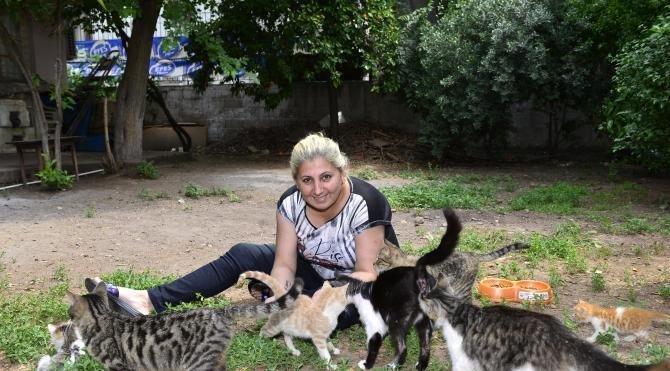 Sokak kedilerini besleyen kadının evinden tahliyesi isteniyor