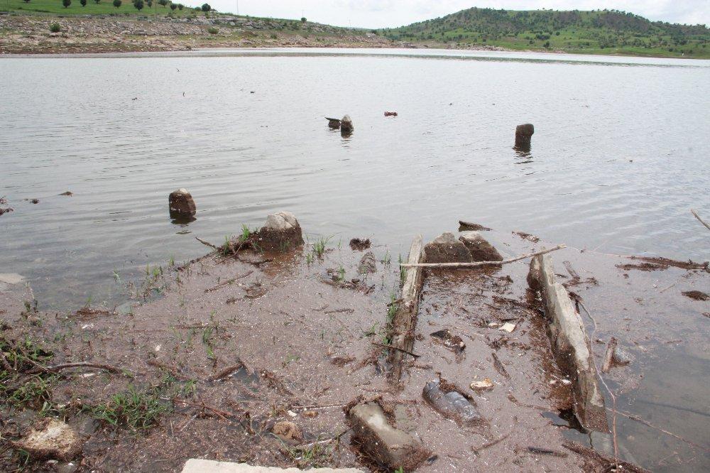 Sular çekildi, define avcıları talan etti