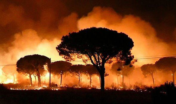 İspanya'da çıkan yangından ötürü 2 bin kişi evlerini terk etti