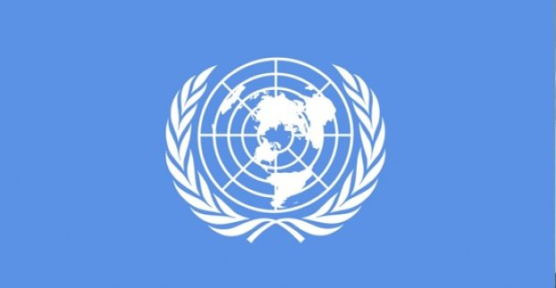 Birleşmiş Milletler'den Nuriye Gülmen ve Semih Özakça için çağrı