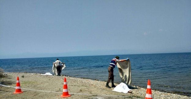İznik Gölü'nde facia: Aynı aileden 4 kişi boğularak hayatını kaybetti