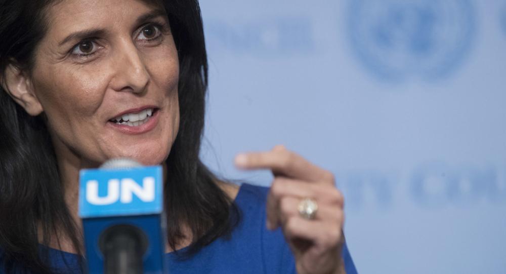 ABD BM Daimi Temsilcisi: Esad'ı İdlib'den uzak durmaya çağırıyoruz
