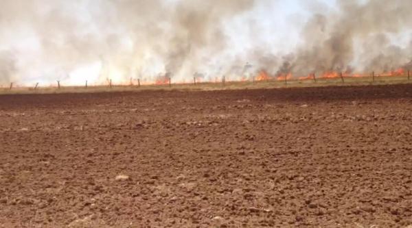 Suriye sınırında mayınlı arazide anız yangını