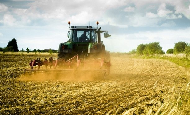 Çiftçiler 'dinen caiz değil' deyip sigortaya karşı çıktı, Diyanet'e 'fetva' çağrısı yapıldı