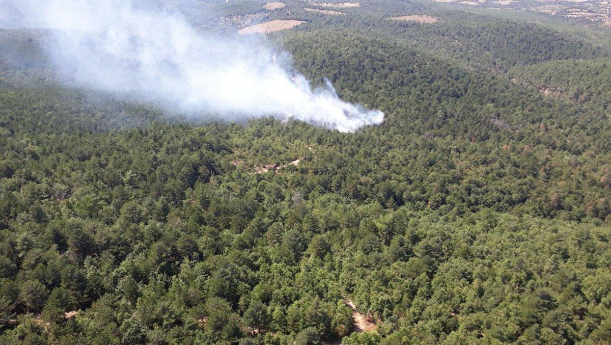 Orman yangınları durmuyor: Bu kez Bayramiç!