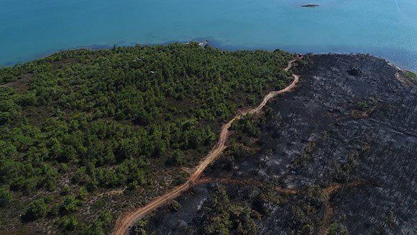Şeytan Sofrası'nda 5 hektar ormanlık alanı kül eden yangında sabotaj şüphesi