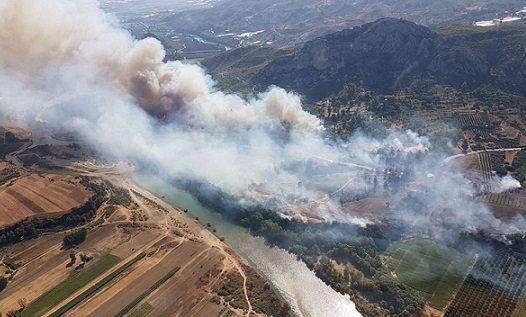 Aspendos Antik Tiyatrosu yakınında orman yangını!