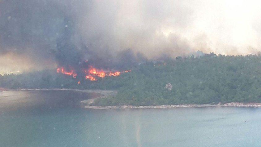 Ayvalık ormanları yanıyor!