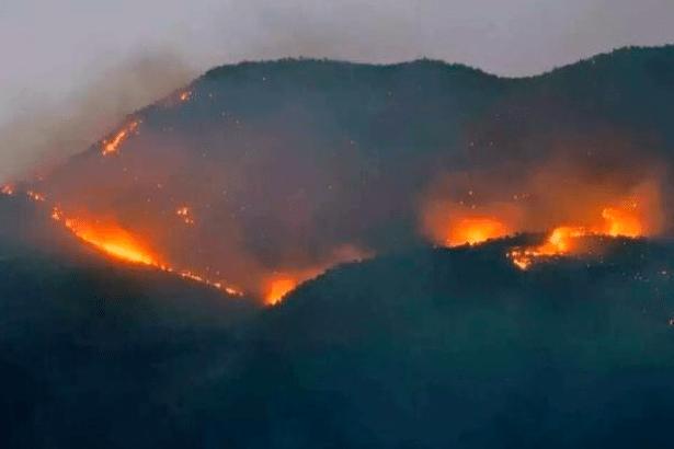 Dersim'de orman yangınlarına müdahale edilmiyor!