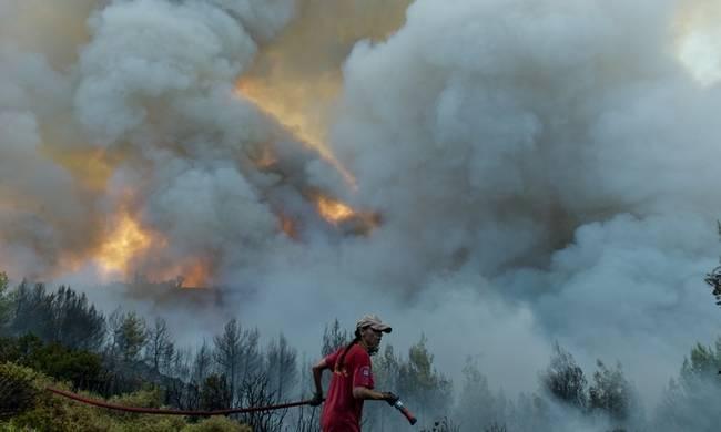 Komşu'da bir gün içinde 91 orman yangını