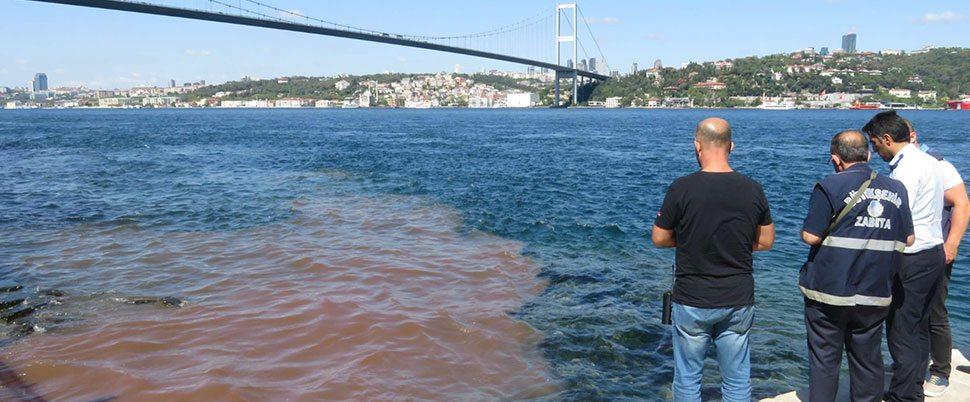 Kurban Bayramı sebebiyle İstanbul Boğazı yine kana boyandı