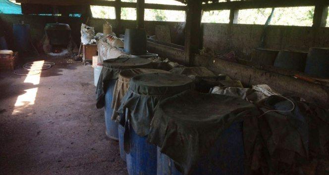 Ahırda içki üretimi: Bin 800 litre boğma rakı ele geçirildi