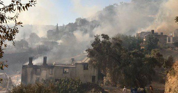 Muğla'da büyük orman yangını: Alevler evlere sıçradı