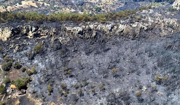 Muğla'dan acı görüntüler: 300 hektarlık orman artık yok...