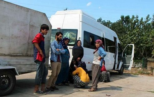 Viranşehir'den gelen fındık işçilerine silahlı saldırı: 1 kadın işçi hayatını kaybetti