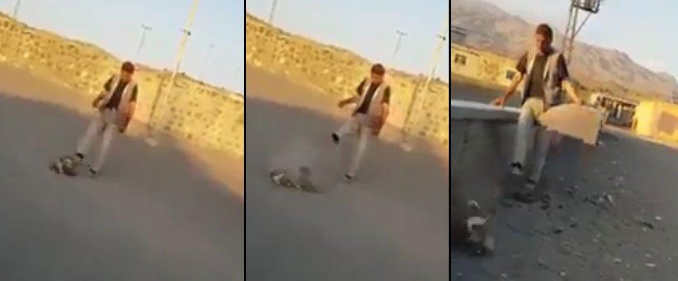 Yavru köpeğe yapılan işkencenin görüntüleri ortaya çıktı