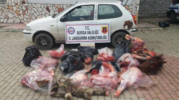Bursa'da piyasaya sürülmek üzere 306 kilo at eti ele geçirildi