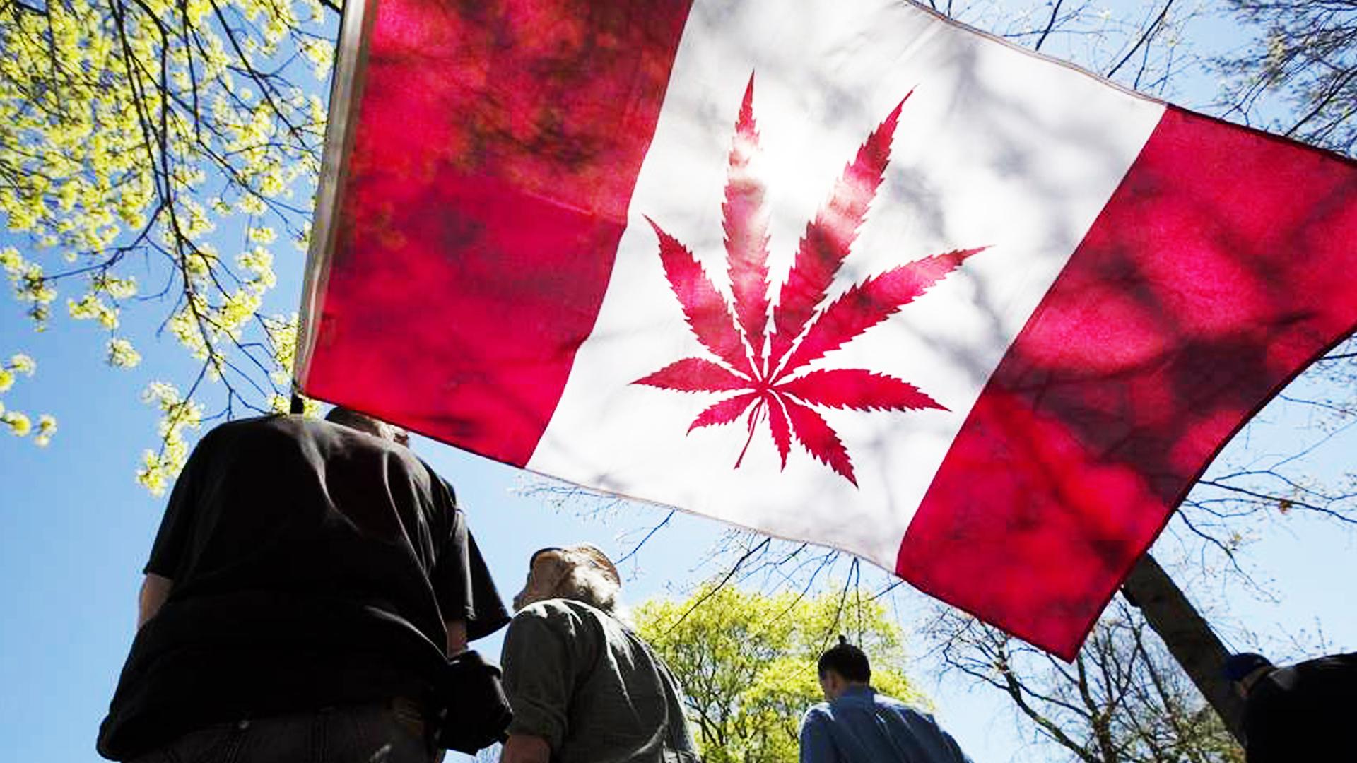 Kanada marihuanayı yasallaştırıyor
