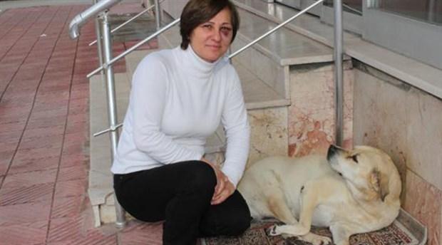 Sokak hayvanlarını besleyen kadına saldırdılar!