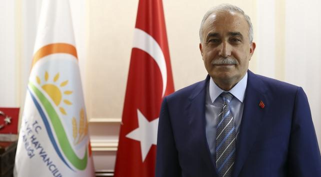 Gıda Tarım ve Hayvancılık Bakanı: Birkaç yıla Türkiye uçacak Allah'ın izniyle