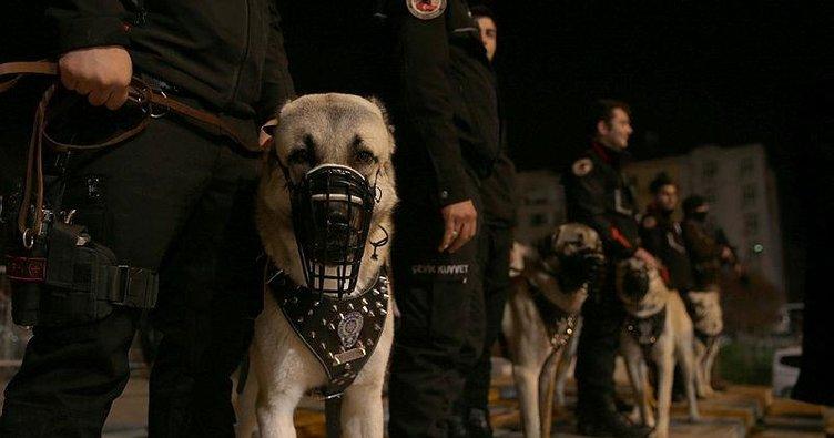 İstanbul'da yılbaşı gecesi 215 kişi gözaltına alındı