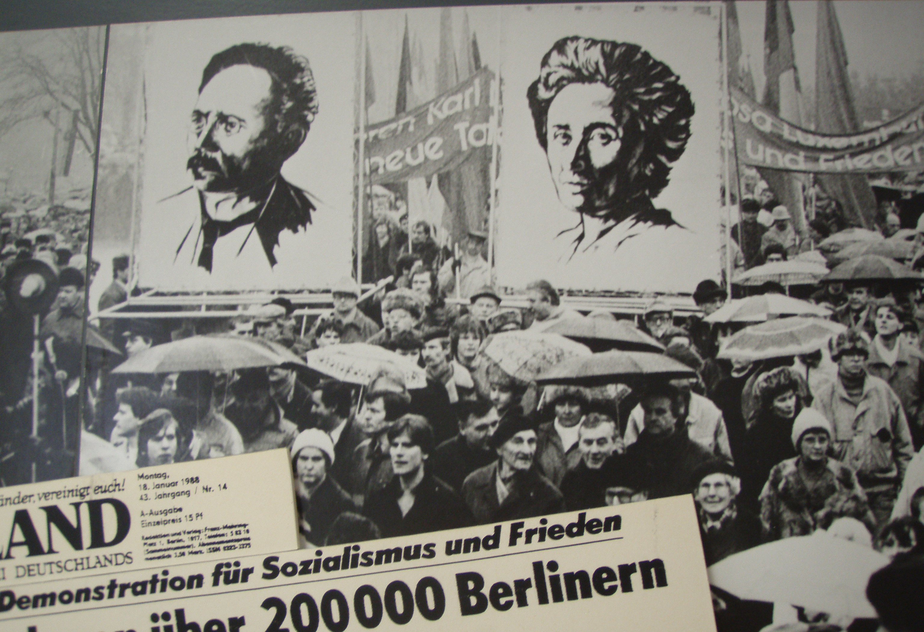 Hafıza-i Beşer | 15 Ocak 1919- Rosa Luxemburg ve Karl Liebknecht öldürüldü