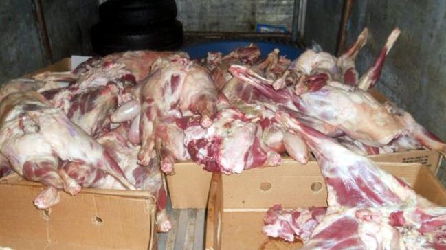 Dilovası'nda 4 ton kaçak et ele geçirildi
