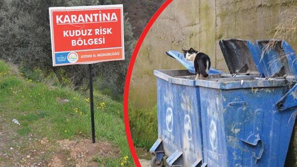 Aydın'da bir mahalle kuduz nedeniyle karantinaya alındı