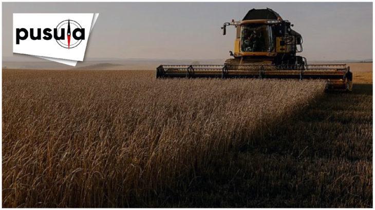 PUSULA | Türkiye tarımı nasıl bitirildi?