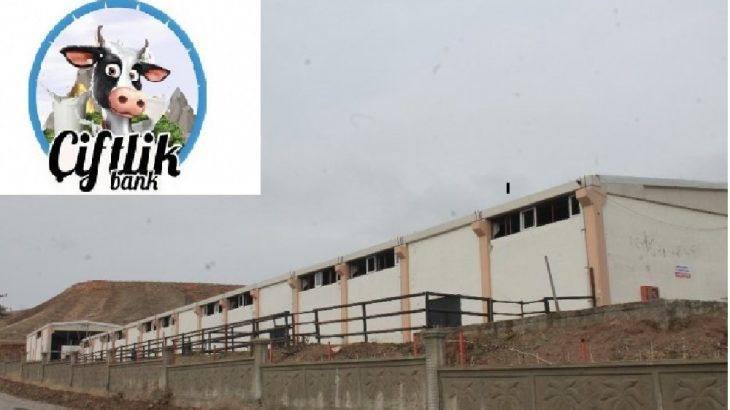 Diyarbakır Silvan'da ikinci Çiftlik Bank vurgunu
