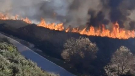Antalya'da sazlık yangını