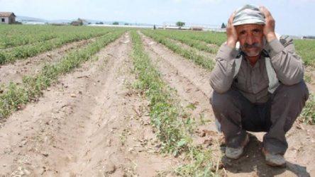 TZOB: Çiftçi borçları acilen uzun vadeli ve faizsiz olarak ertelenmeli